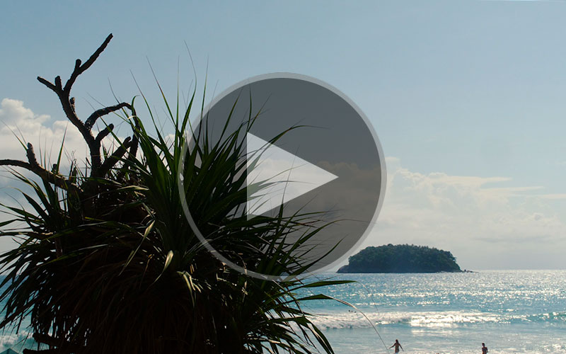 Thailand - In Motion - Travel Video